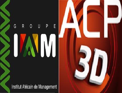 Constitution d'une filière pérenne de conception-fabrication de films d'animation 3D Le défi en voie d'être relevé à Dakar