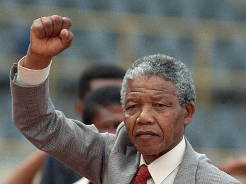 Mandela : l'homme tigre