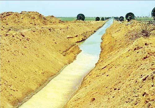 Impacts négatifs d'un projet agro-industriel à Gninth : Une ONG brûle Sen Huile-Sen Ethanol