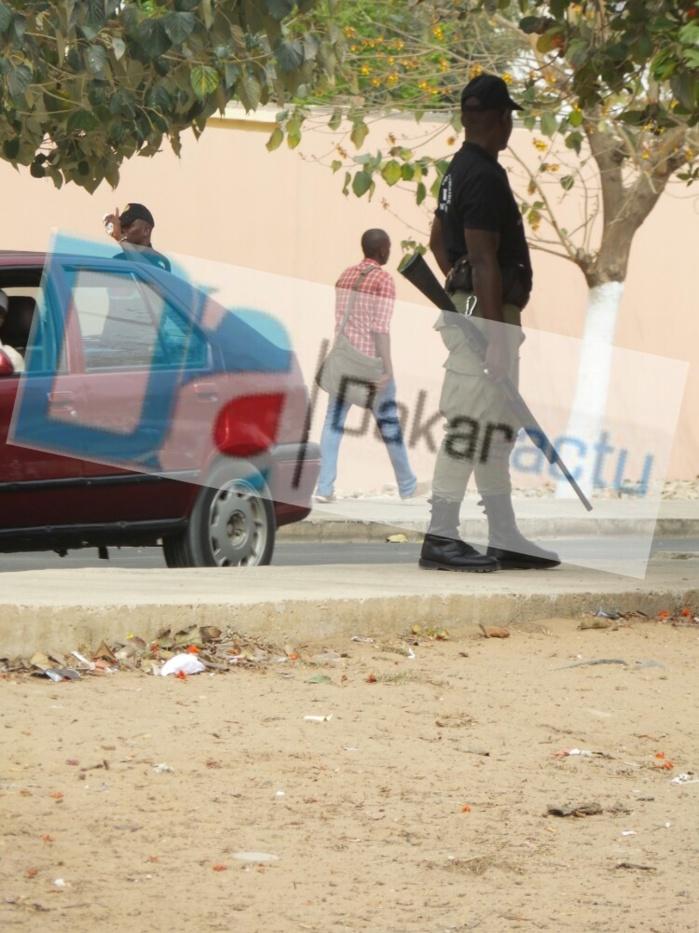 Bavure policière  après le départ de Wade : Des policiers balancent des grenades lacrymogènes sur les militants du Pds et des ...maisons