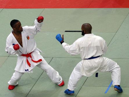 Championnats d'Afrique de karaté : les Lions récoltent neuf médailles