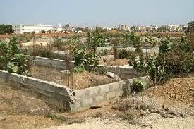 Foncier : le Sénégal accueille un forum sur la question