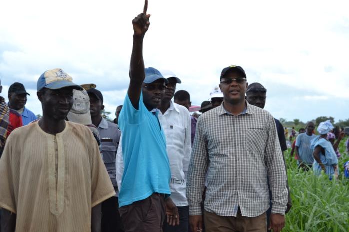 Le ministre Mame Mbaye Niang constate l'effectivité du Domaine agricole communautaire de Séfa
