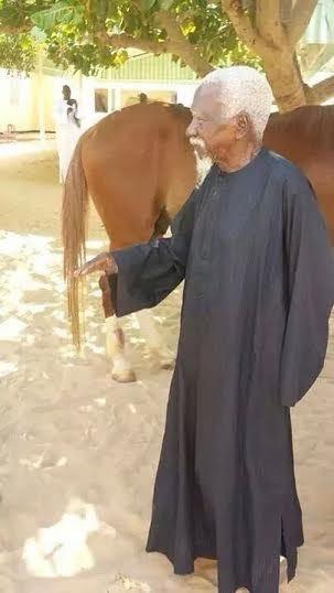 Le Khalif général des Mourides Serigne Sidy Makhtar Mbacké chez lui avec son cheval