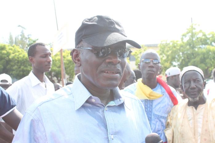 Habib Sy, membre du Pds : « Pour arriver à l'autosuffisance en riz, il faut supprimer la SAED et la SODAGRI »