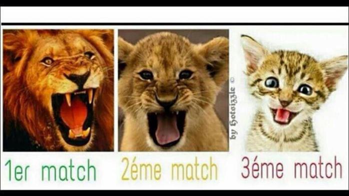 """Des internautes analysent le parcours des """"Lions"""" à la CAN 2015... Regardez"""