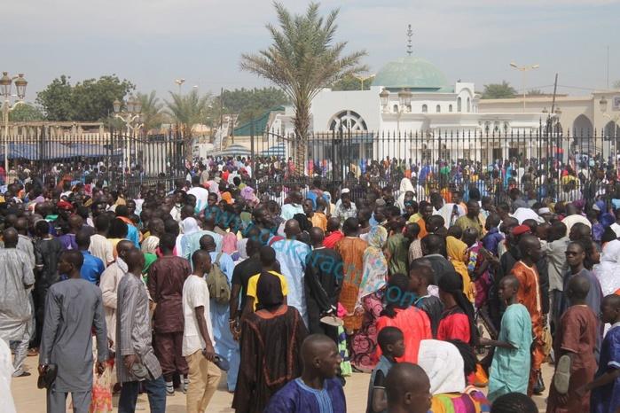 Image - Sénégal - Serigne Fallou M'backé se déchaîne :