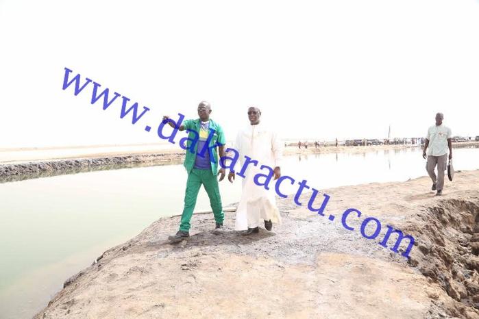 Macky traverse une passerelle d'un mètre de large pour rencontrer un travailleur des salins du Sine-Saloum