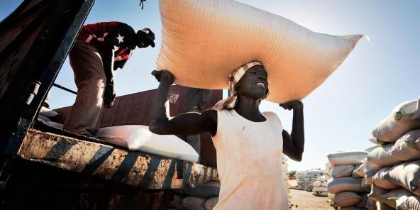 AGROALIMENTAIRE : Au Sénégal, la croissance est dans les champs (Jeune Afrique)