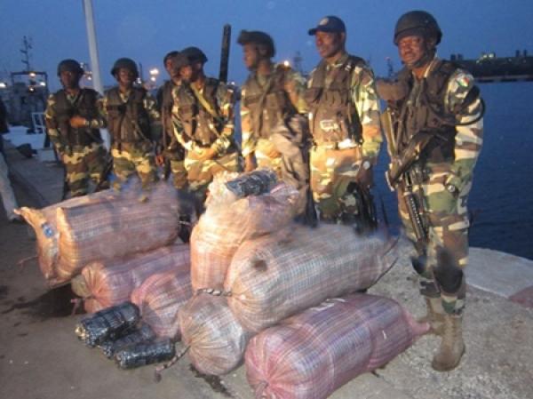 Raid de la gendarmerie à Mbour : 50 kg de chanvre indien saisis, plus de 3 000 véhicules immoblisés