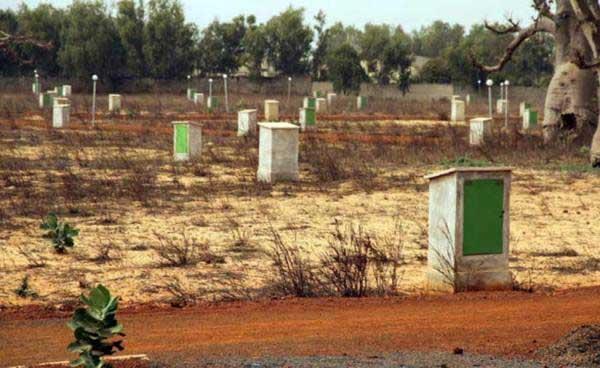Escroquerie foncière : 5 personnes déférées au parquet et placées sous mandat de dépôt