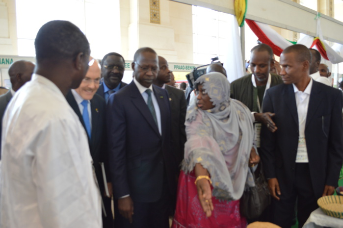 Programme de Productivité Agricole en Afrique de l'ouest (PPAAO) : Les pays membres invités à s'inspirer du modèle sénégalais