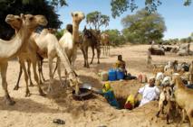 Le changement climatique frappe le plus les populations pauvres et affamées