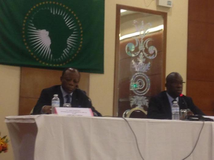 ELECTION EN CENTRAFRIQUE : Déclaration de Souleymande Ndéné Ndiaye chef de la mission d'observation de l'Ua
