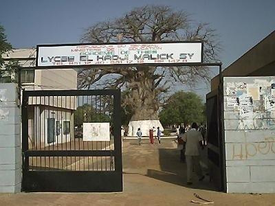 """Vente dun bonbon appellé « nicoteen » dans les écoles : L'association """" mon Sénégal à moi """" lance l'alerte"""