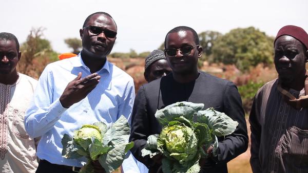 Le Diobass prêt à abriter un Domaine Agricole Communautaire (DAC) de 1000 ha pour un investissement de 5 milliards de FCFA