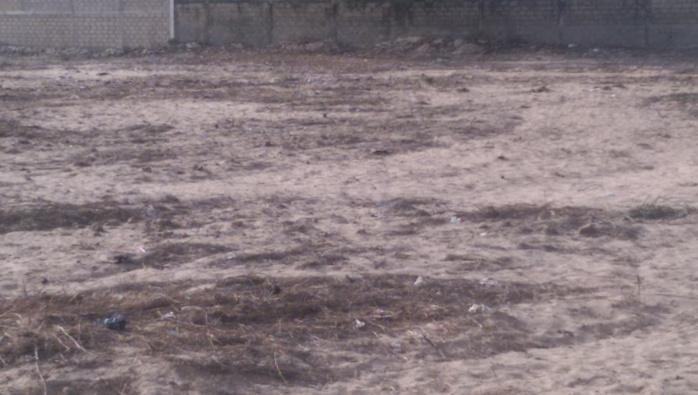 NÉBULEUSE AUTOUR DU TITRE FONCIER 1107 A NDIAKHIRATE : Des services de l'Etat « déshéritent » la famille Thiandoum