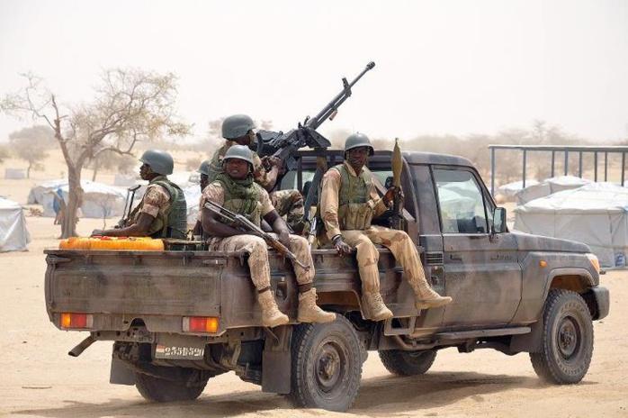 L'Armée tape fort : Plusieurs hectares de drogue détruits en Casamance