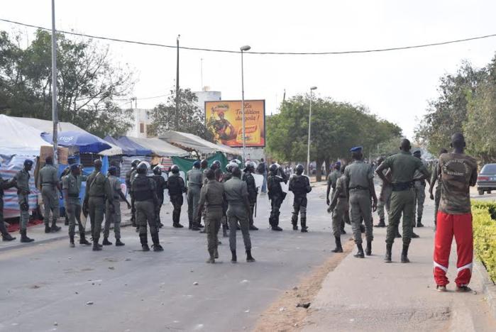 Keur Mbaye Fall : La police interpelle 3 individus qui tenaient un trafic intense de chanvre indien