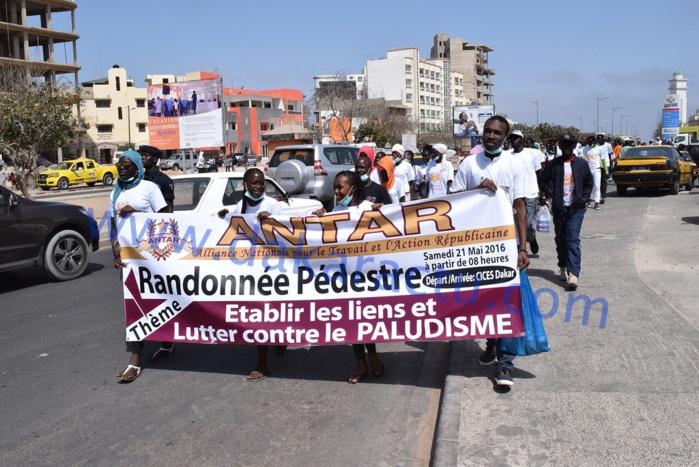 """L'Alliance nationale pour le travail et l'action républicaine (ANTAR) dirigée par le dynamique Baba Diallo a organisé une randonnée pédestre ce samedi 21 mai autour d'un thème fédérateur """"Rétablir les liens et lutter contre le Paludisme"""""""