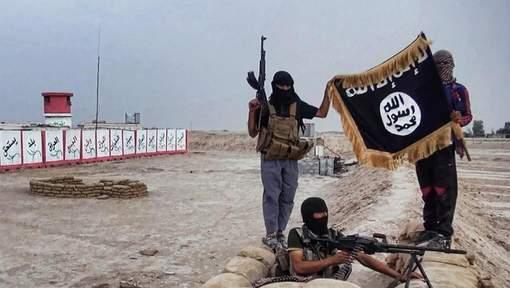 Attaques de Boko Haram: le Tchad envoie des troupes au Niger