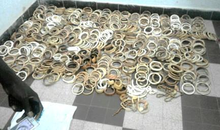 Lutte contre la criminalité faunique au Sénégal : Opérations «  coup de poing » à Ziguinchor pour une saisie record de 1081 pièces d'ivoire, poil d'éléphant, trophées de lion et 16 carapaces de tortue verte espèce hautement menacée de disparition