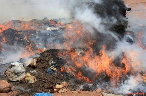 Lutte contre le trafic de drogue : 9 tonnes de produits illicites incinérés