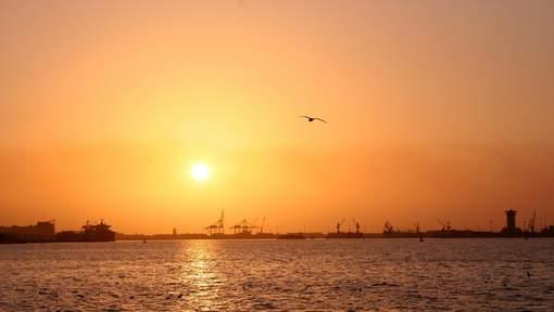 Le Koweït bat un record avec la journée la plus chaude jamais enregistrée sur Terre
