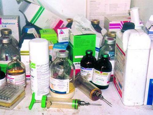 LA DOUANE SAISIT 1, 25 TONNE DE MÉDICAMENTS ET DE PRODUITS VÉTÉRINAIRES