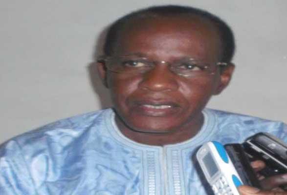 Trafic de bois vers la Gambie : L'ancien député Opa Diallo dénonce la complicité entre certaines populations et les trafiquants