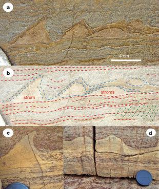 Les plus anciennes traces de vie découvertes au Groenland