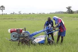 L'ONG Association de bienfaisance Islamique de Louga distribue du matériel aratoire aux paysans