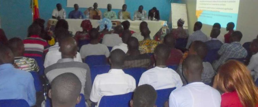 KOLDA : Le Mouvement Bamtaare Sénégal vulgarise le PSE