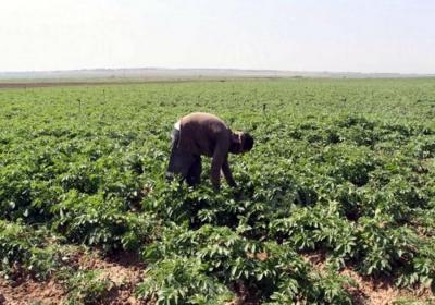Atelier de validation du Processus de création des Chambres d'Agriculture du Sénégal