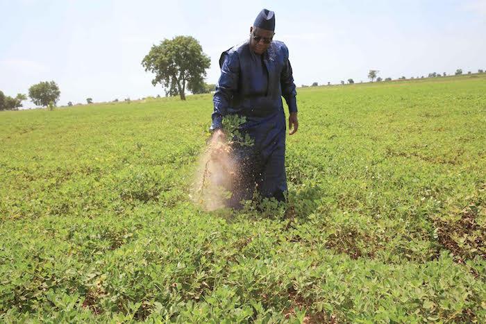 BILAN DE LA TOURNEE ECONOMIQUE DE MACKY SALL : Djiby Sy magnifie une communion avec les paysans