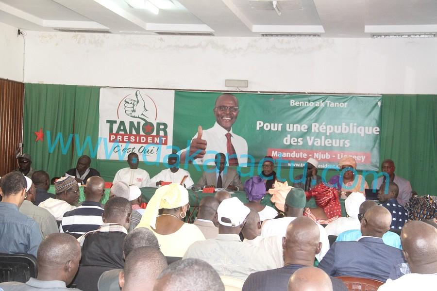 Nomination de Tanor au HCCT : les vertus de OTD chantées par les socialistes