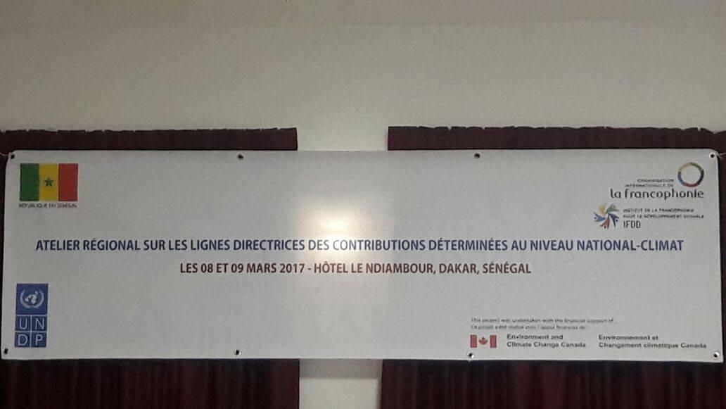 Élaboration des Contributions Déterminées au Niveau National : pour une transition des CPDNs vers les CDNs