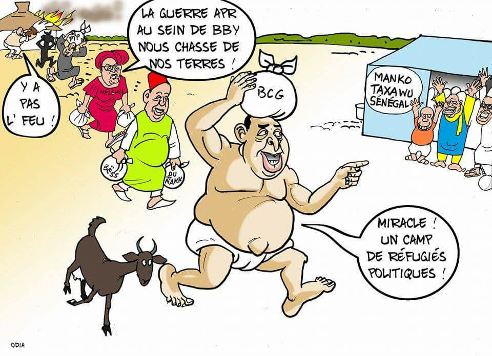 Toxu ou transhumance (La Tribune d'Odia).