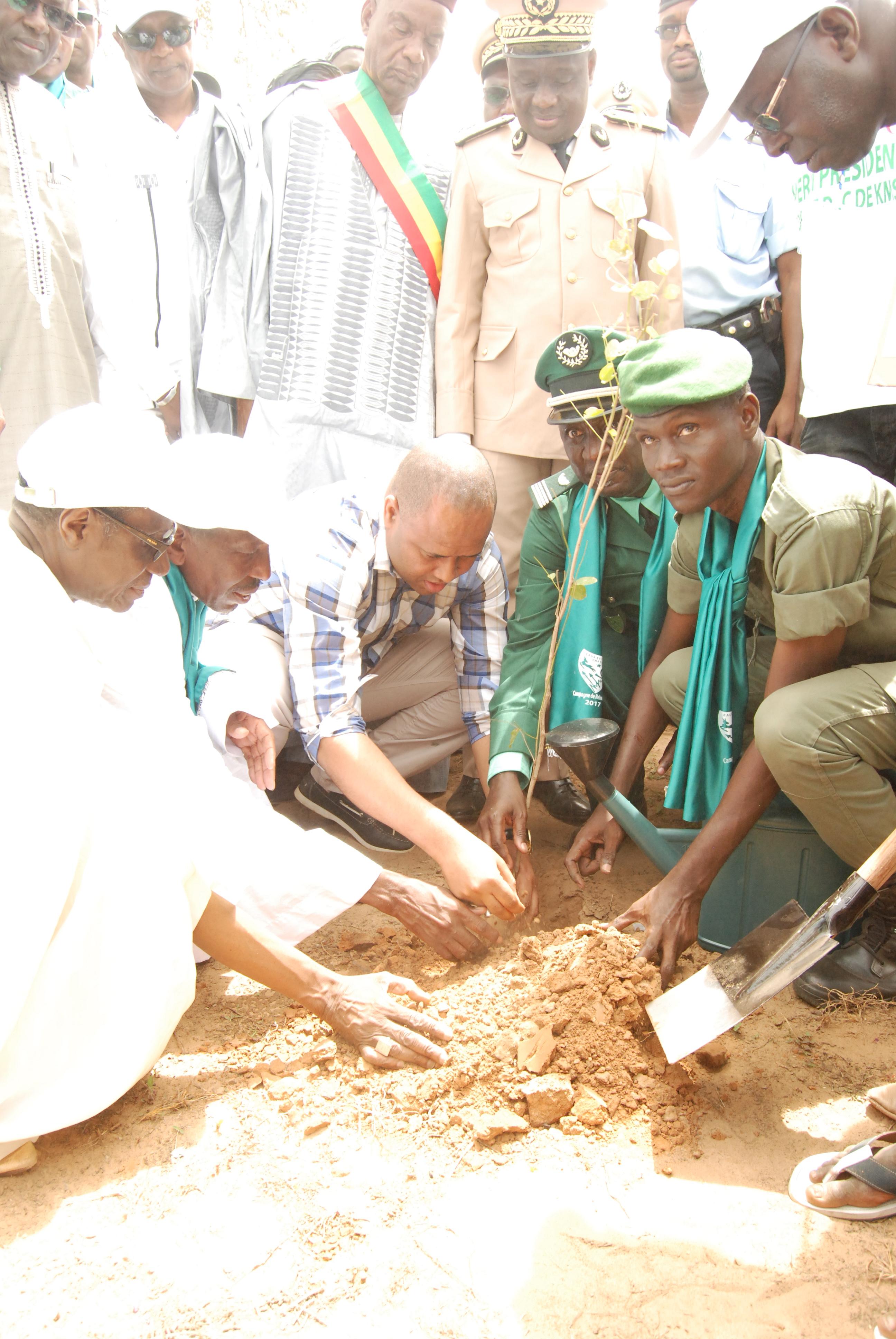 Journée de l'arbre : Le ministre de l'environnement invite à un effort collectif pour éradiquer ce fléau