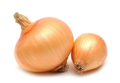 TABASKI : Le marché de l'oignon sera suffisamment approvisionné