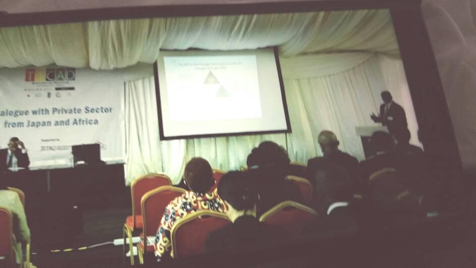 MAPUTO : Les opportunités du Plan Sénégal Emergent présentées au secteur privé japonais par le ministre du Commerce Alioune Sarr