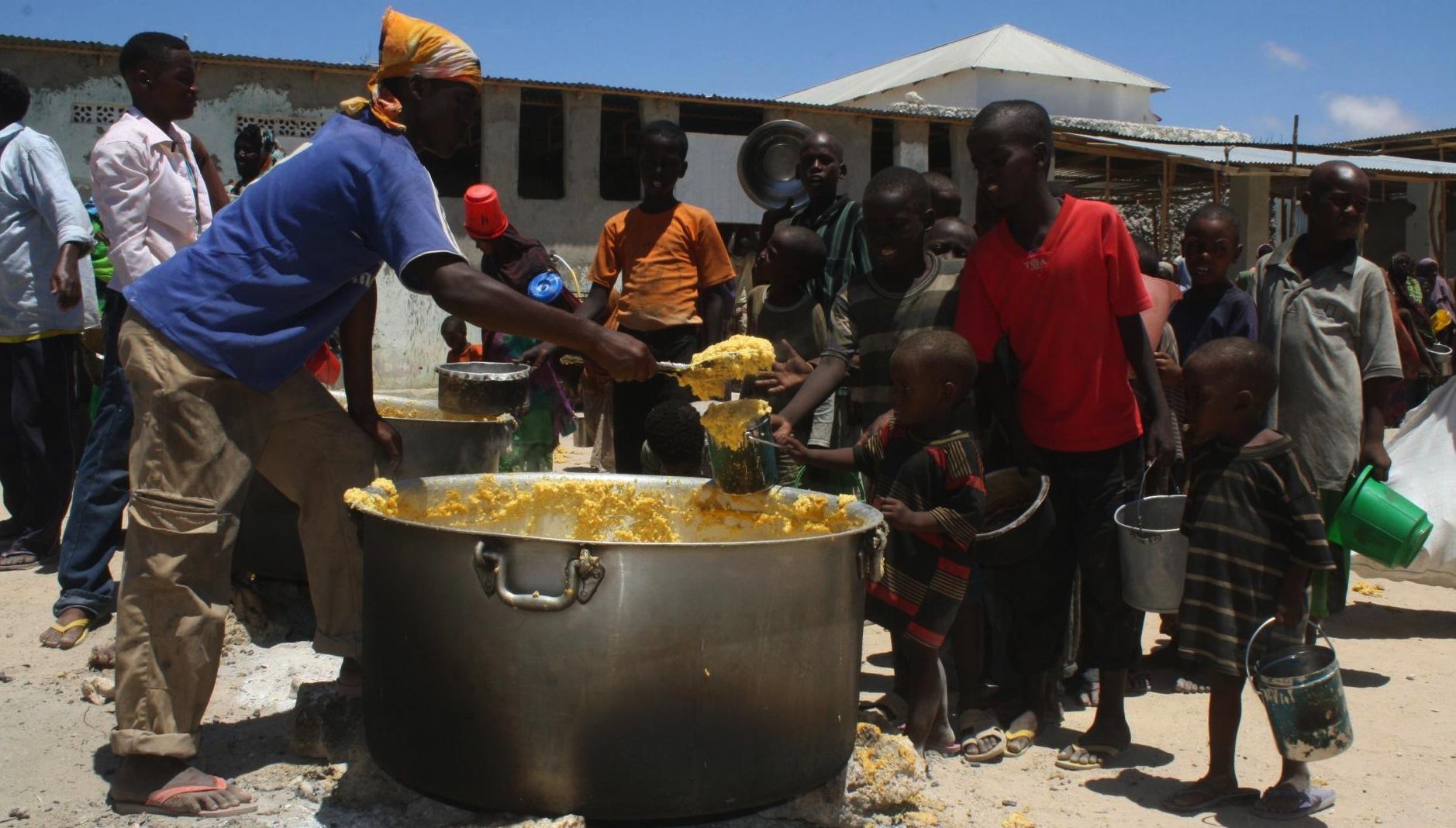 300 millions d'Africains sont sous-alimentés (BAD)