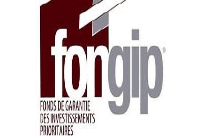 Au bout de trois ans d'activités : le FONGIP fait sa mue et affiche ses statistiques / 27 634 emplois créés ; 44, 4 milliards mobilisés ; 41 départements couverts…