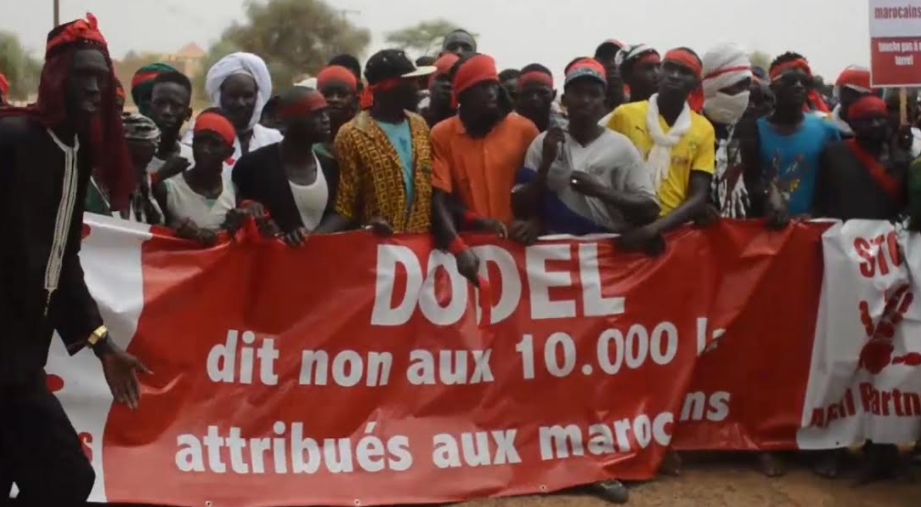 Conflit foncier à DODEL et DEMETTE : Le groupe marocain dément le retrait des 10 000 hectares et