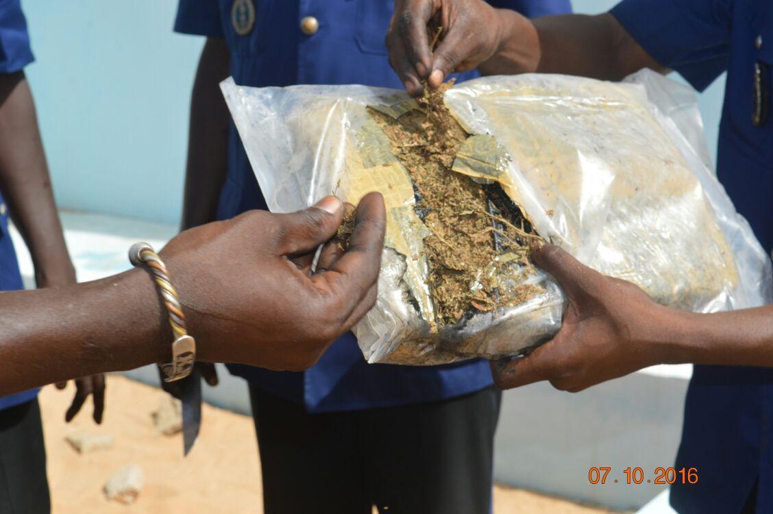 400 kg de chanvre  indien saisis à Joal