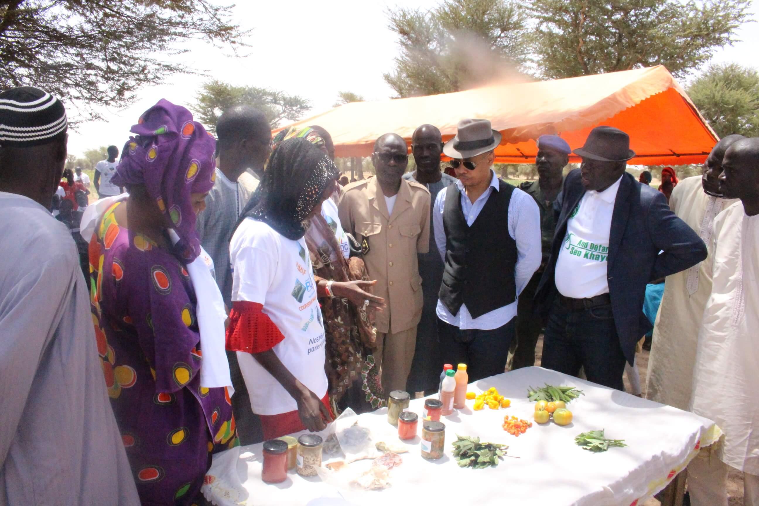 A Ngoudiane et à Fandène : Le Ministre Souleymane Jules Diop visite les réalisations du PUDC