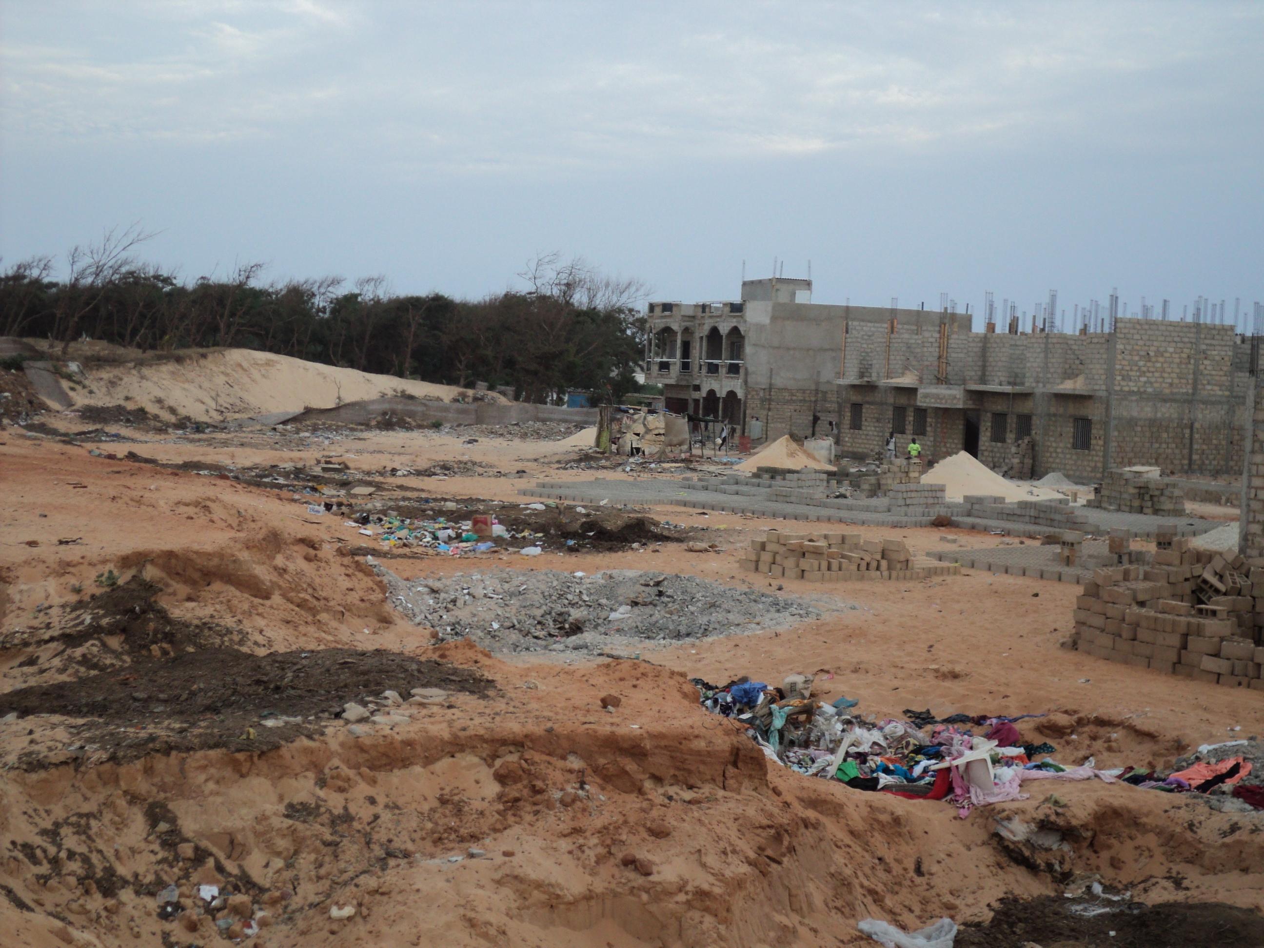 Lettre ouverte au Président de la république : Transformation de la bande de filaos de Guédiawaye en parcelles d'habitation