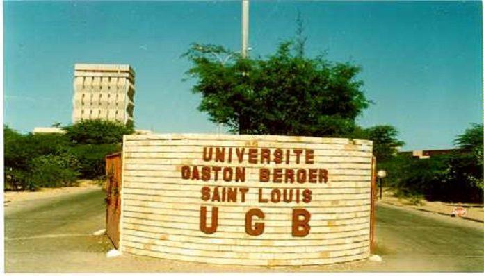 L'université de Saint-Louis a perdu toute sa mémoire