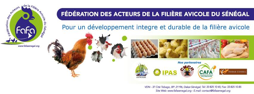 Ouverture prochaine de la filière avicole au marché extérieur : la FAFA alerte sur les menaces