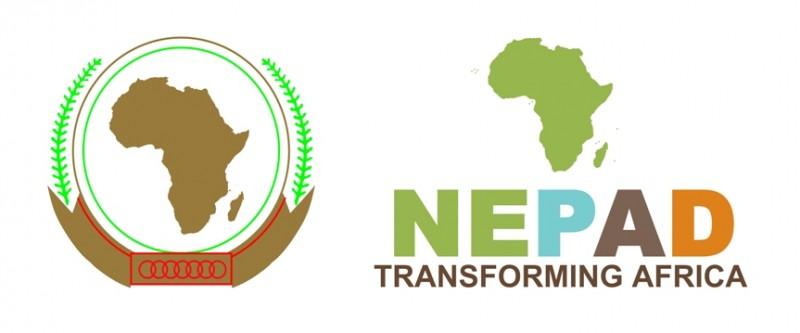 La transformation du Nouveau partenariat pour le développement de l'Afrique (NEPAD) en Agence de développement de l'Union africaine